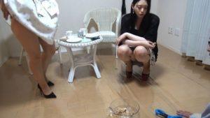 8月16日 blog公開分_190816_0008